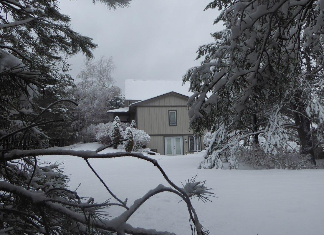 Moonlight & Pines B&B Back Patio in Winter